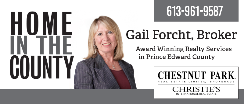 Gail Forcht